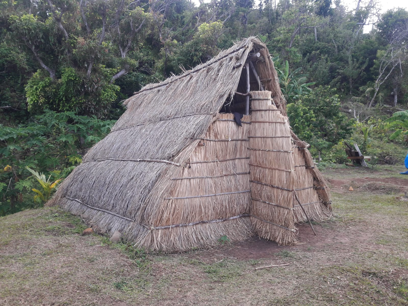 Traditional Kalinago Hut