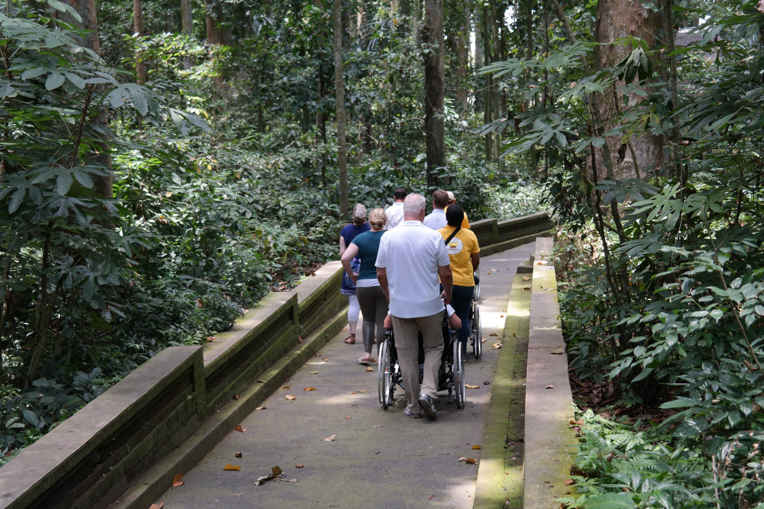 Accessible Monkey Forest